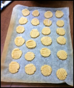 Sugar-Cookies-ready-for-the-oven-001